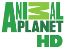 036_animal_planet_us_hd.png